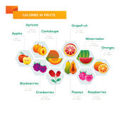Fruit infographic. Fruit calories consistency infographics, calories amount in food stock illustration