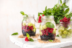 Fruit Infused Detox Water with black currants, red currants, gooseberries and mint. Cold Fruit Infused Detox Water with black currants, red currants Stock Photos