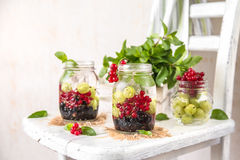 Fruit Infused Detox Water with black currants, red currants, gooseberries and mint. Cold Fruit Infused Detox Water with black currants, red currants Royalty Free Stock Photos