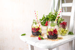 Fruit Infused Detox Water with black currants, red currants, gooseberries and mint. Cold Fruit Infused Detox Water with black currants, red currants Stock Image