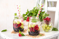 Fruit Infused Detox Water with black currants, red currants, gooseberries and mint. Cold Fruit Infused Detox Water with black currants, red currants Stock Photography