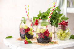 Fruit Infused Detox Water with black currants, red currants, gooseberries and mint. Cold Fruit Infused Detox Water with black currants, red currants Royalty Free Stock Image