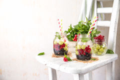 Fruit Infused Detox Water with black currants, red currants, gooseberries and mint. Cold Fruit Infused Detox Water with black currants, red currants Stock Images