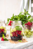 Fruit Infused Detox Water with black currants, red currants, gooseberries and mint. Cold Fruit Infused Detox Water with black currants, red currants Royalty Free Stock Photography