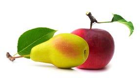 Fruit isolated on a white background Stock Photo