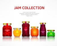 Fruit jam collection Stock Images
