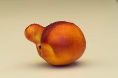Fruit jaune de nectarine avec l'anomalie image libre de droits