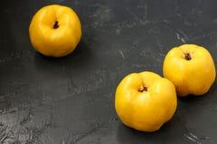 Fruit jaune mûr de coing sur le fond foncé photographie stock