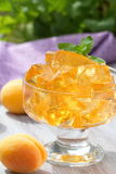 Fruit jellies with fresh apricots Stock Photo