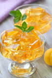 Fruit jellies with fresh apricots Royalty Free Stock Photo
