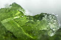Fruit jelly. Green fruit jelly with studio lights Stock Photo