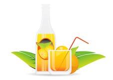 Fruit juice 1. Vector Painting Illustration Stock Photos