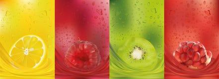 Fruit juice, lemon, raspberry, kiwi, pomegranate. 3d fresh fruits. Fruit splashes close up. Vector illustration. Fruit juice, lemon, raspberry, kiwi vector illustration