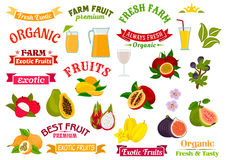 Fruit juice signs. Juicy fresh fruits icons set Stock Images