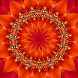 Fruit juteux d'un rouge ardent Photos libres de droits