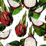 Fruit juteux Pitahaya d'isolement sur le blanc Photo libre de droits