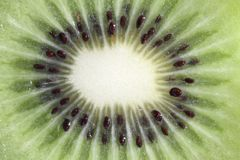Fruit kiwi isolated in close up macro Royalty Free Stock Photography