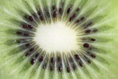Fruit kiwi isolated in close up macro Royalty Free Stock Photography