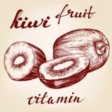 Fruit kiwi set hand drawn Stock Photography