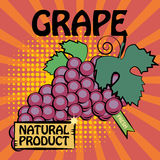Fruit label, Grape Royalty Free Stock Photos