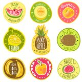 Fruit labels. Juice fresh organic fruit natural vegan food farm emblem logo print sticker text cartoon vector templates vector illustration