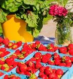Fruit in landbouwersmarkt het plaatsen Stock Afbeeldingen