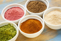 Fruit and leaf powders Stock Photography