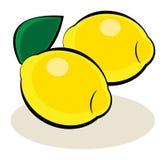 Fruit, Lemon Stock Photography
