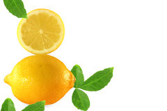 Fruit lemon Stock Images