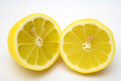 Fruit of the lemon tree. The fruit of the lemon tree on the white backgrount stock photo