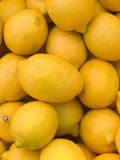 Fruit  lemons  yellow  citron Royalty Free Stock Image