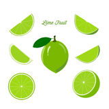 Fruit lime and ripe juicy slices of lime Stock Photo