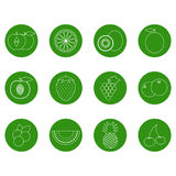 Fruit line green icons Stock Images