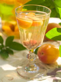 Fruit liqueur Stock Images