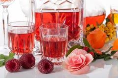 Fruit liqueurs Stock Images