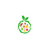 Fruit  logo. Fruit logo for your company Stock Images