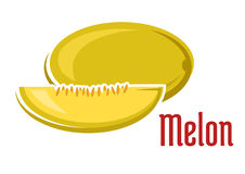 Fruit mûr de melon d'arome avec la tranche Photographie stock libre de droits