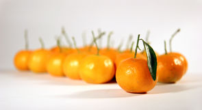 Fruit-mandarin. Much fruit for the health and the well-being Stock Images