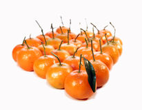Fruit-mandarin. Much fruit for the health and the well-being Royalty Free Stock Photo