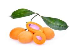 Fruit marial de prune avec des feuilles d'isolement sur le blanc Photographie stock