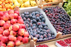 Fruit Market. A fruit stand selling plums, grapes, nectarines, apricots , pears and other fresh fruit Royalty Free Stock Photo