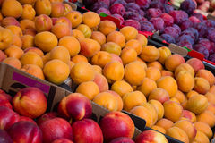 Fruit market closeup - peaches, nectarines and plums Royalty Free Stock Photo