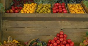Fruit Market. Fresh fruit assortment in baskets and boxes on wooden shelf stock video