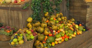 Fruit Market. Fresh fruit assortment on wooden shelf stock video footage