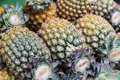 Fruit market Stock Image