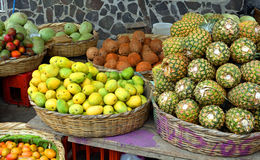 Fruit Market. Tropical Fruits for sale in the local Nicaraguan Market royalty free stock photos