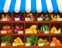 Fruit market vector showcase stand with fruits. Fruit display of shop, store or market counter showcase stand. Fresh farm harvest of fruits and berries melon and Royalty Free Stock Photography