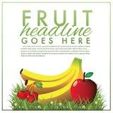 Fruit marketing malplaatje Stock Afbeelding