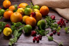 Fruit, menthe fraîche et baies Photo libre de droits