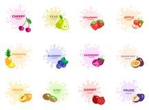 Fruit met de vectorreeks van de yoghurtdaling Stock Afbeeldingen